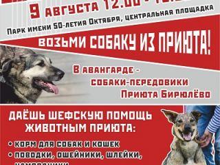 """Анонс второй выставки собак в рамках фестиваля """"Приюти друг@!"""""""
