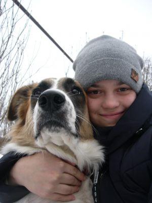 Собака Балу из приюта нашла дом Бирюлево