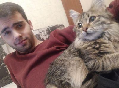 Кошка Шерри из приюта Бирюлево нашла дом Бирюлево