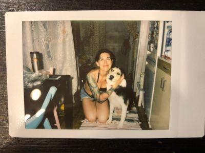 Собака Джонни из приюта нашла хозяина Бирюлево