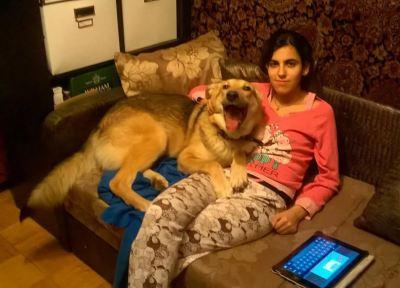 Собака из приюта Вольт нашла дом Бирюлево